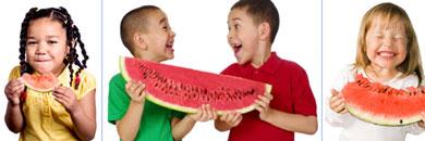 Blog-watermelon-header