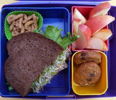 Garden-Sandwich-bento-lunch
