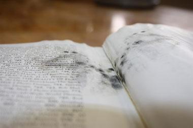 Moldy-Book