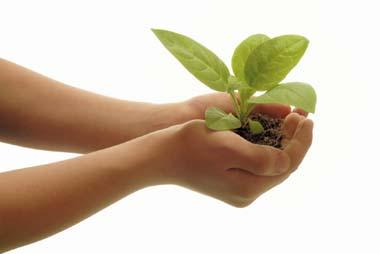 Child-holding-plant